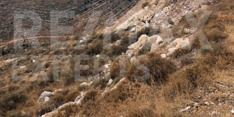 R9-251 Land for sale in Al Koura, North Lebanon.