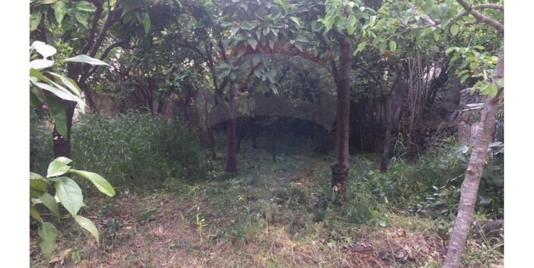 House and land plot for sale Bechmezine.
