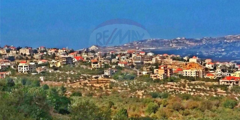 Land 8349 sq m for Sale in Amioun – koura
