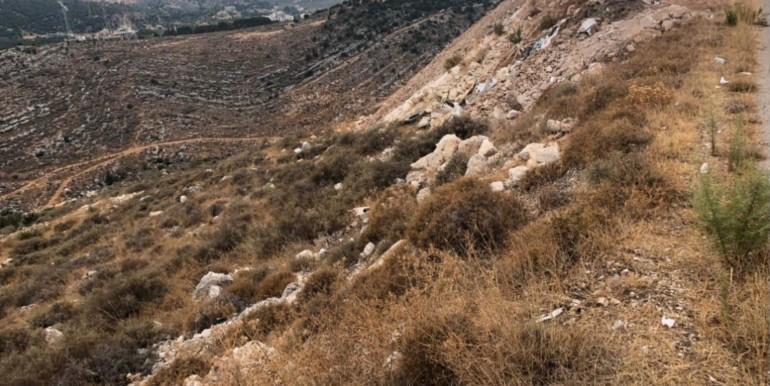 Land for sale in Al Koura, North Lebanon.